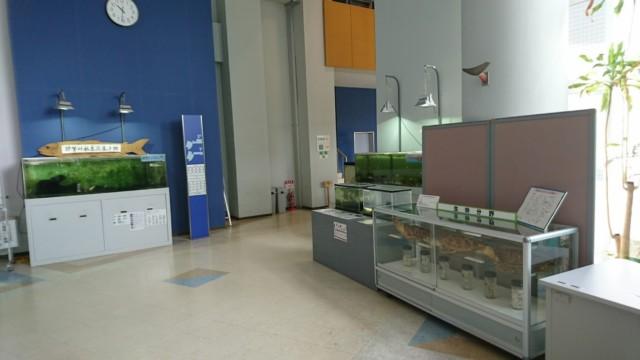 阿南市科学センター