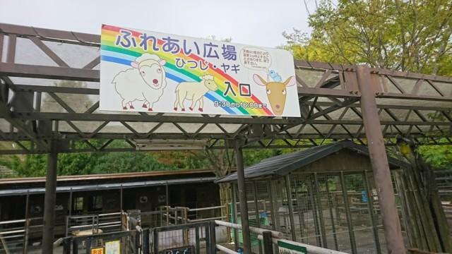 徳島動物園 こども動物園