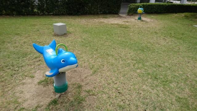 竜宮公園イルカ