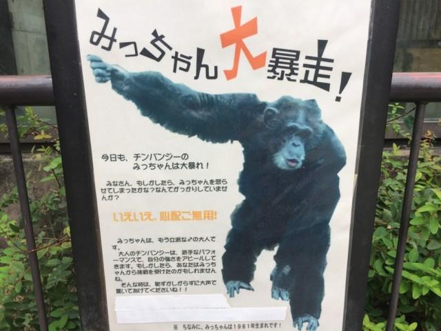 とくしま動物園 みっちゃん