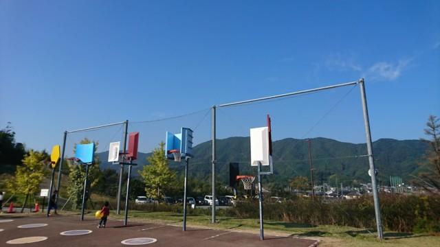 徳島県南部健康運動公園 バスケットゴール